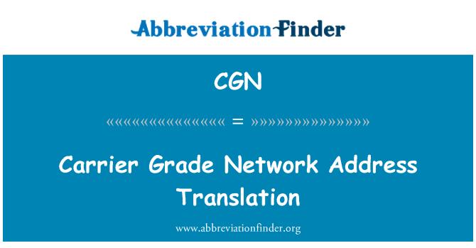 CGN: Carrier Grade Network Address Translation