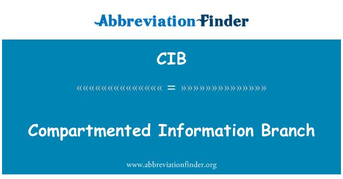 CIB: Compartmented Information Branch