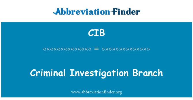 CIB: Criminal Investigation Branch