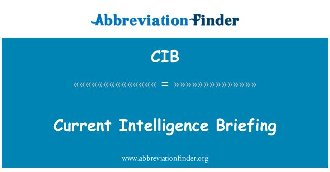 CIB: Current Intelligence Briefing
