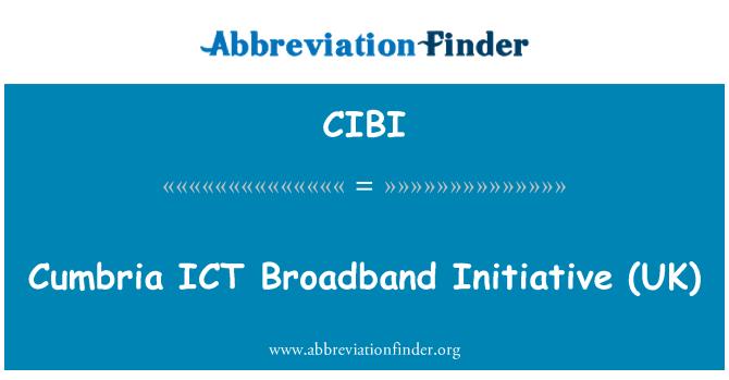 CIBI: Cumbria IKT lairiba algatuse (UK)
