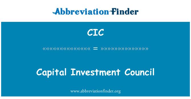 CIC: Consejo de inversión de capital
