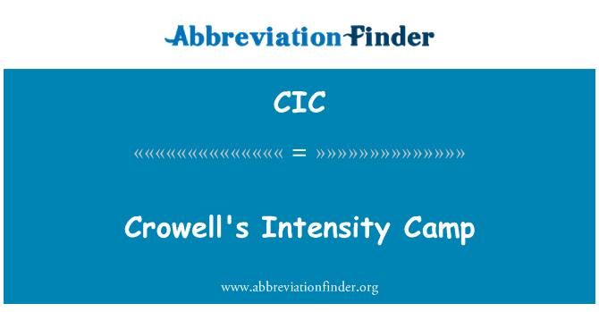 CIC: Campo de intensidad de Crowell