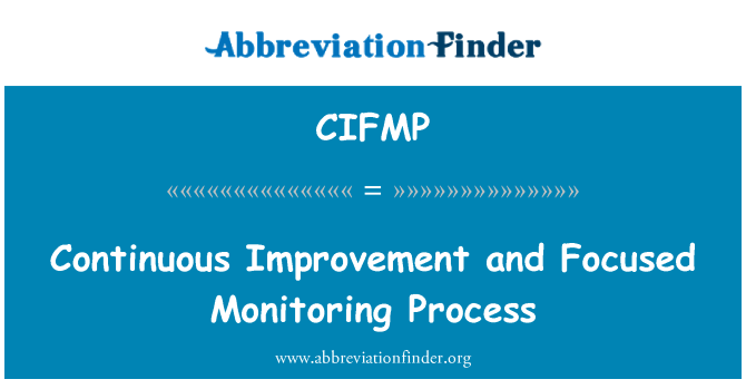 CIFMP: Continuous Improvement and Focused Monitoring Process