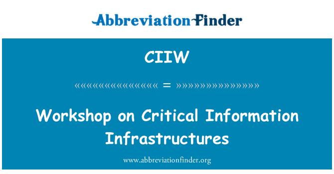 CIIW: Workshop on Critical Information Infrastructures