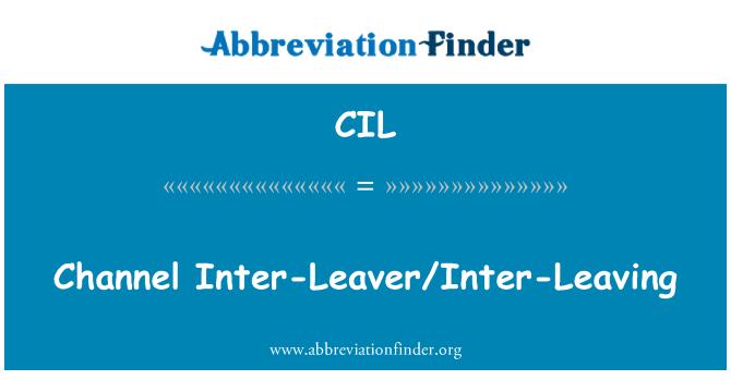 CIL: Channel Inter-Leaver/Inter-Leaving