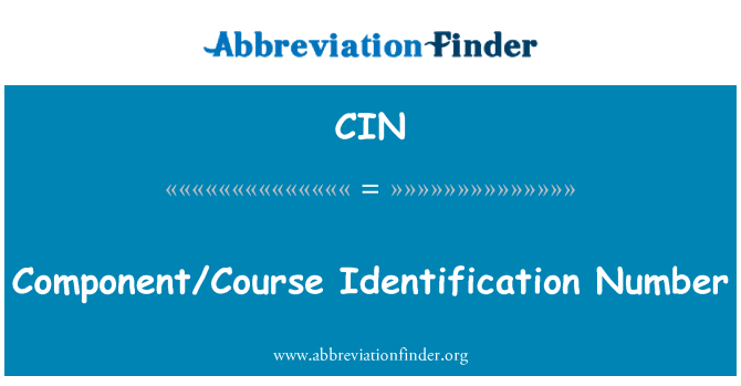 CIN: Component/Course Identification Number