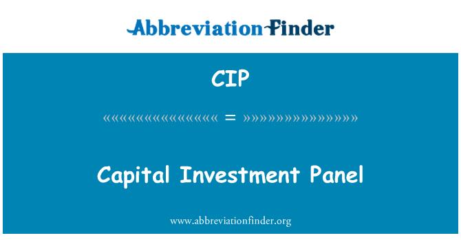 CIP: Capital Investment Panel