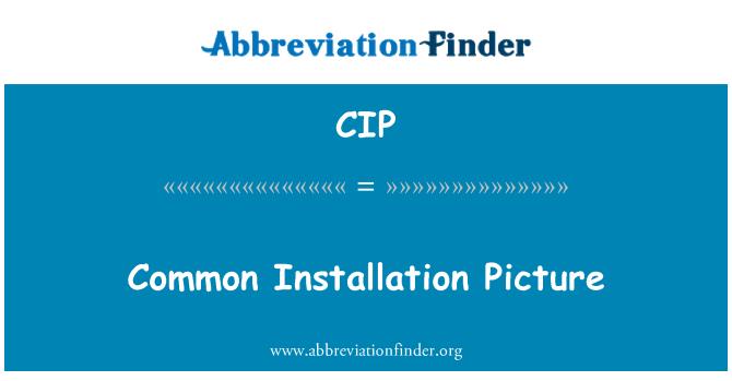 CIP: Common Installation Picture