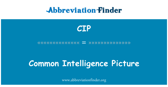 CIP: Common Intelligence Picture