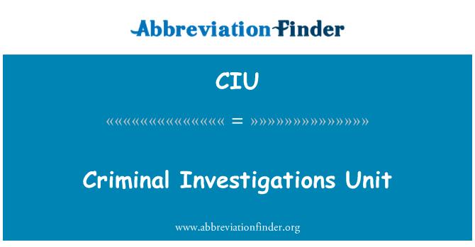 CIU: Criminal Investigations Unit