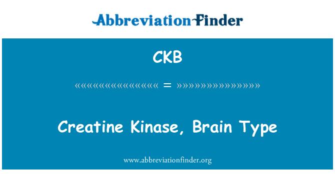 CKB: Creatine Kinase, Brain Type