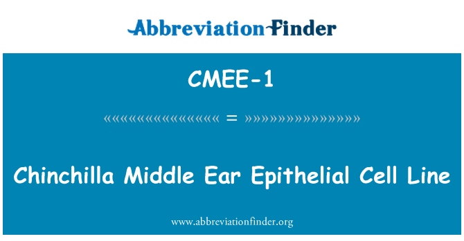 CMEE-1: Chinchilla Middle Ear Epithelial Cell Line