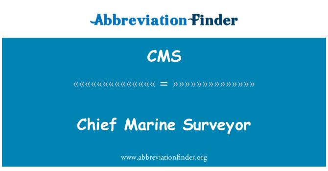 CMS: Chief mere Ülevaataja