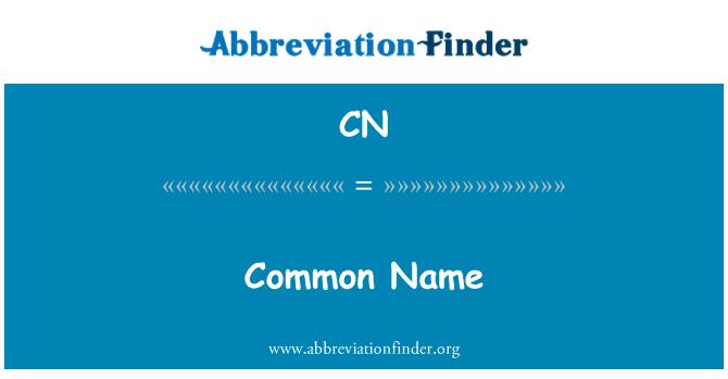 CN: Common Name