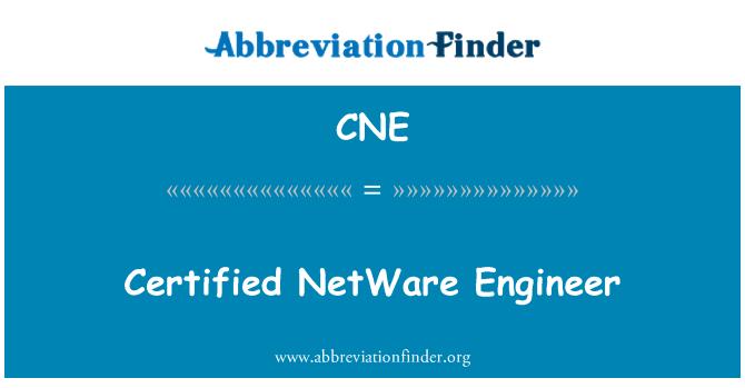 CNE: Certified NetWare Engineer