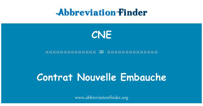 CNE: Contrat Nouvelle Embauche
