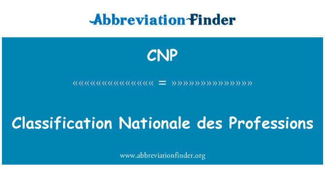 CNP: Classification Nationale des Professions