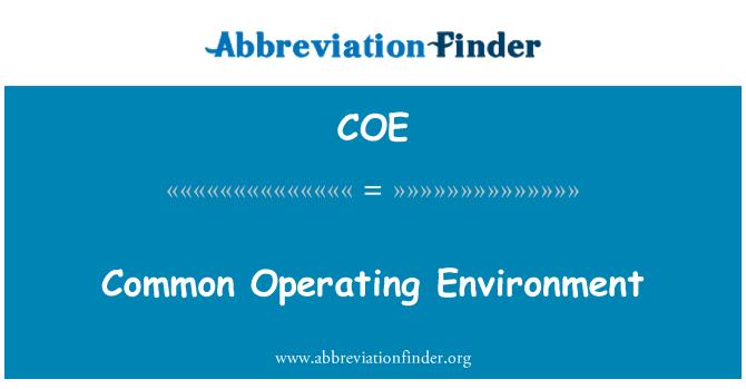 COE: Common Operating Environment