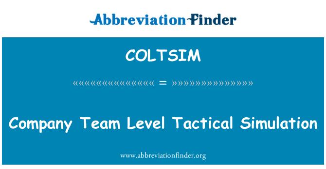 COLTSIM: Şirket takım düzeyinde taktik simülasyon