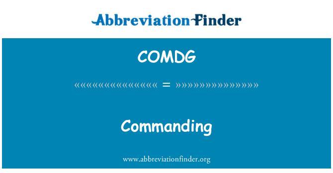 COMDG: Zapovjednik