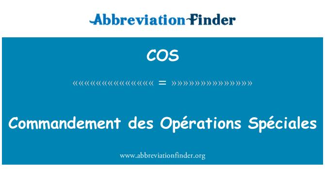 COS: Commandement des Opérations Spéciales