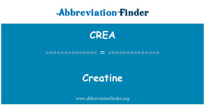 CREA: Creatine