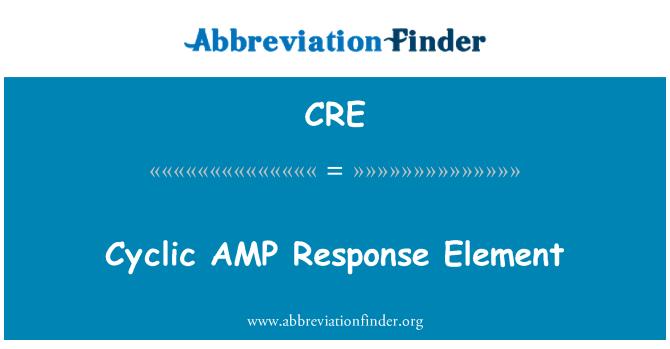 CRE: Cyclic AMP Response Element
