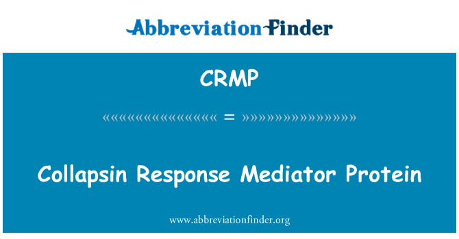 CRMP: Yanıt arabulucu Protein collapsin