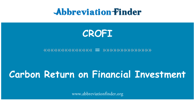 CROFI: Carbon Return on Financial Investment
