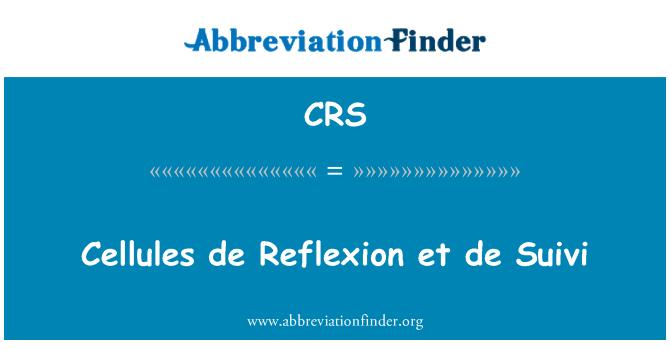 CRS: Cellules de Reflexion et de Suivi