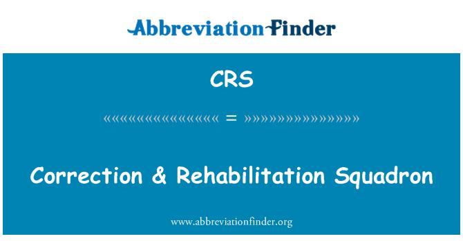 CRS: Correction & Rehabilitation Squadron