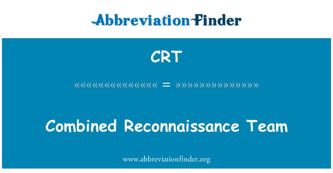 CRT: Combined Reconnaissance Team