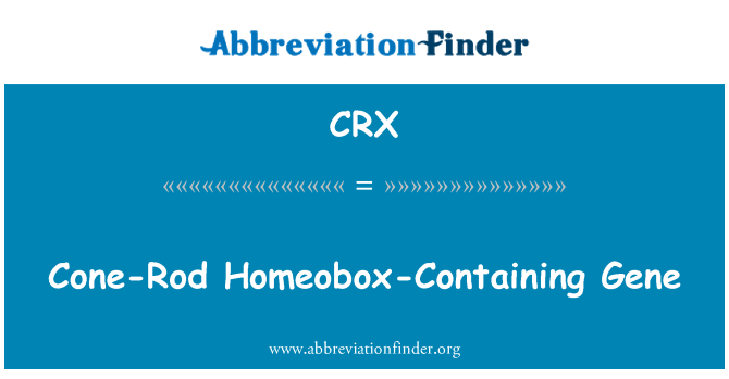 CRX: Cone-Rod Homeobox-Containing Gene