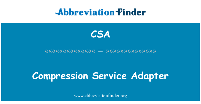 CSA: Compression Service Adapter