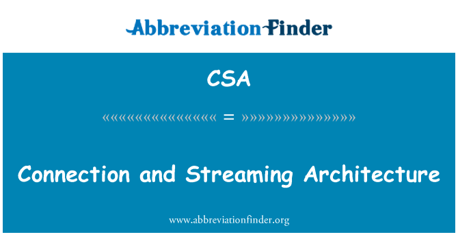 CSA: Connection and Streaming Architecture