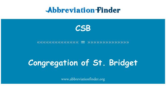CSB: Congregation of St. Bridget