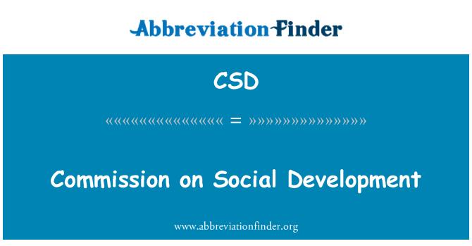 CSD: Commission on Social Development