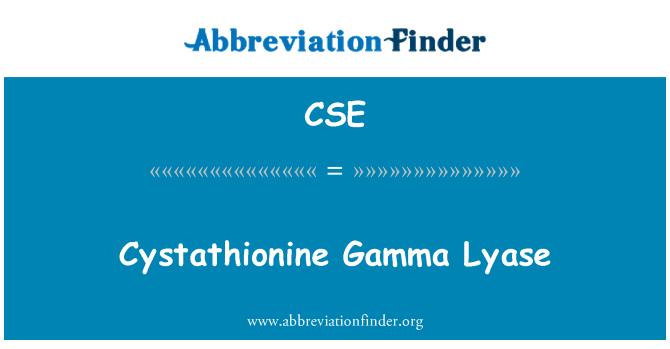 CSE: Cystathionine Gamma Lyase
