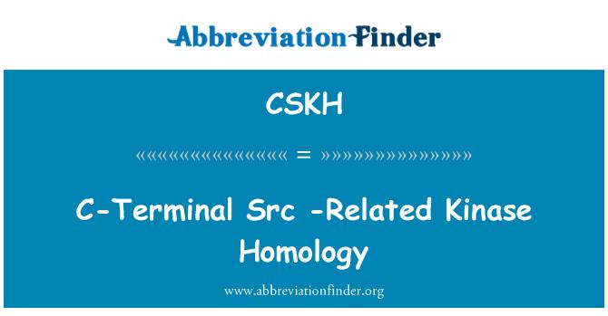 CSKH: C-Terminal Src  -Related Kinase Homology