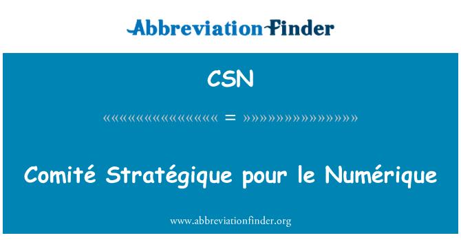 CSN: Comité Stratégique pour le Numérique