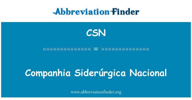 CSN: Companhia Siderúrgica Nacional