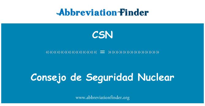 CSN: Consejo de Seguridad Nuclear