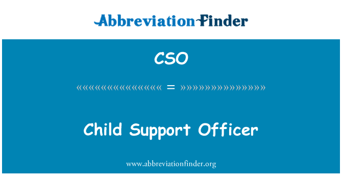 CSO: Child Support Officer