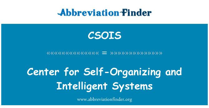 CSOIS: Центр самоорганізації та інтелектуальних систем