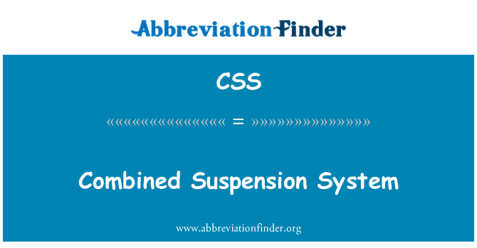 CSS: Combined Suspension System