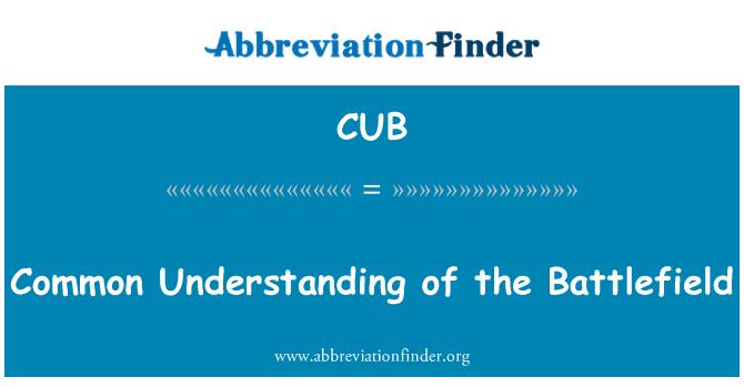 CUB: Common Understanding of the Battlefield