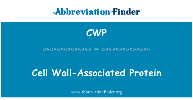 CWP: Cell Wall-Associated Protein