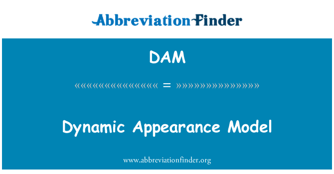 DAM: Dynamic Appearance Model