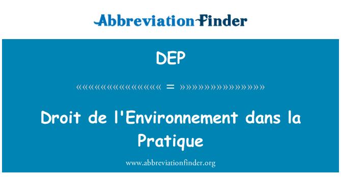 DEP: Droit de l'Environnement dans la olukorrale